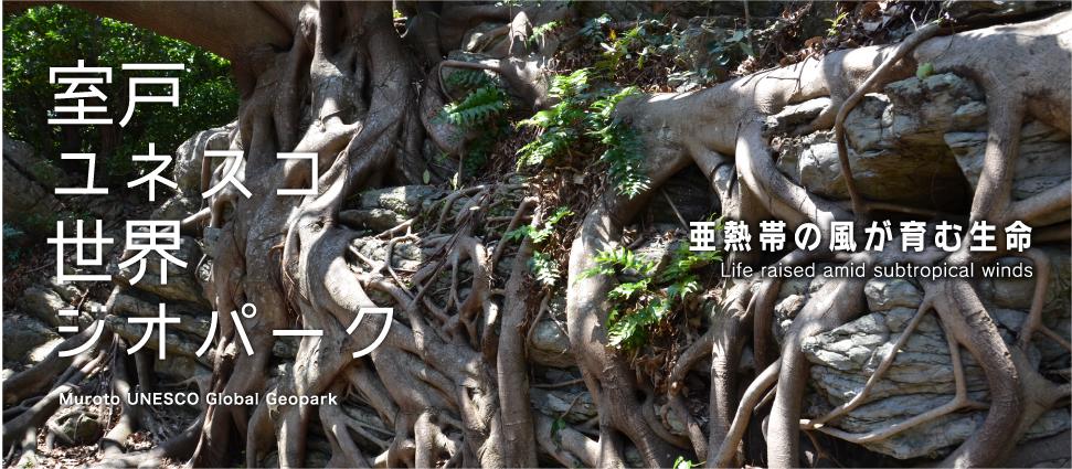 亜熱帯の風が育む生命
