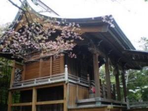 佐喜浜八幡宮:写真2