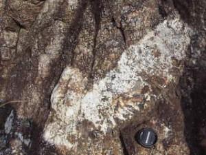 斑レイ岩ペグマタイト:写真1
