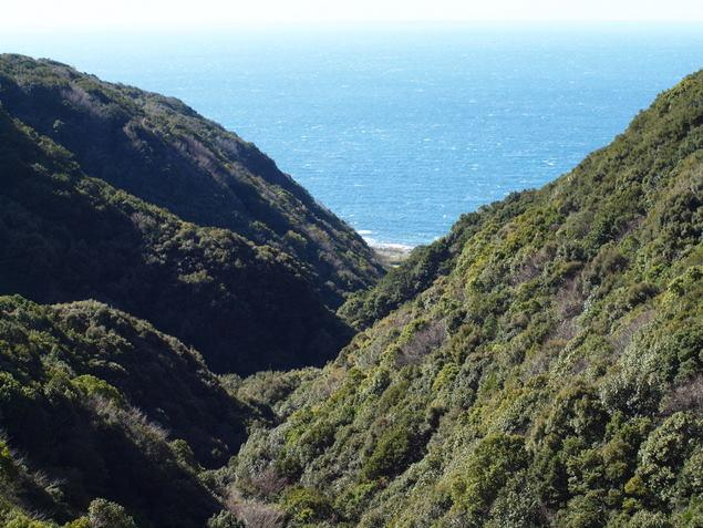 崎山台地の断層:写真1