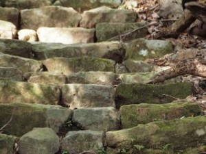 四十寺山層:写真2