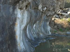 行水の池:写真2