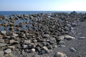 地震により隆起した浜:写真1