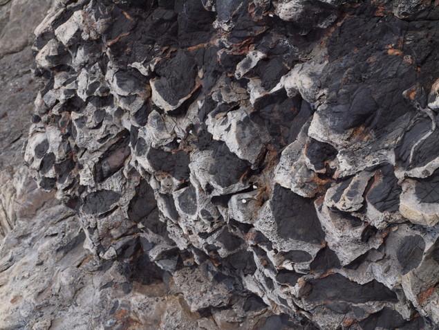 偽レキ岩:写真1