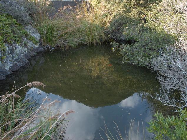 目洗いの池:写真1