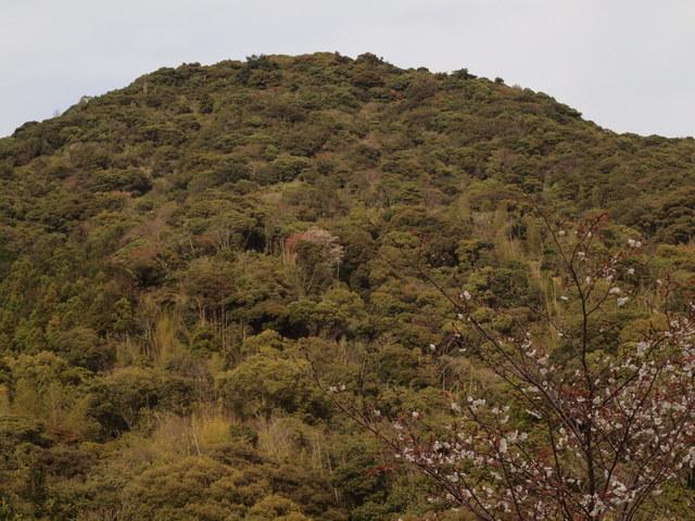 四十寺山(しじゅうじさん):写真1