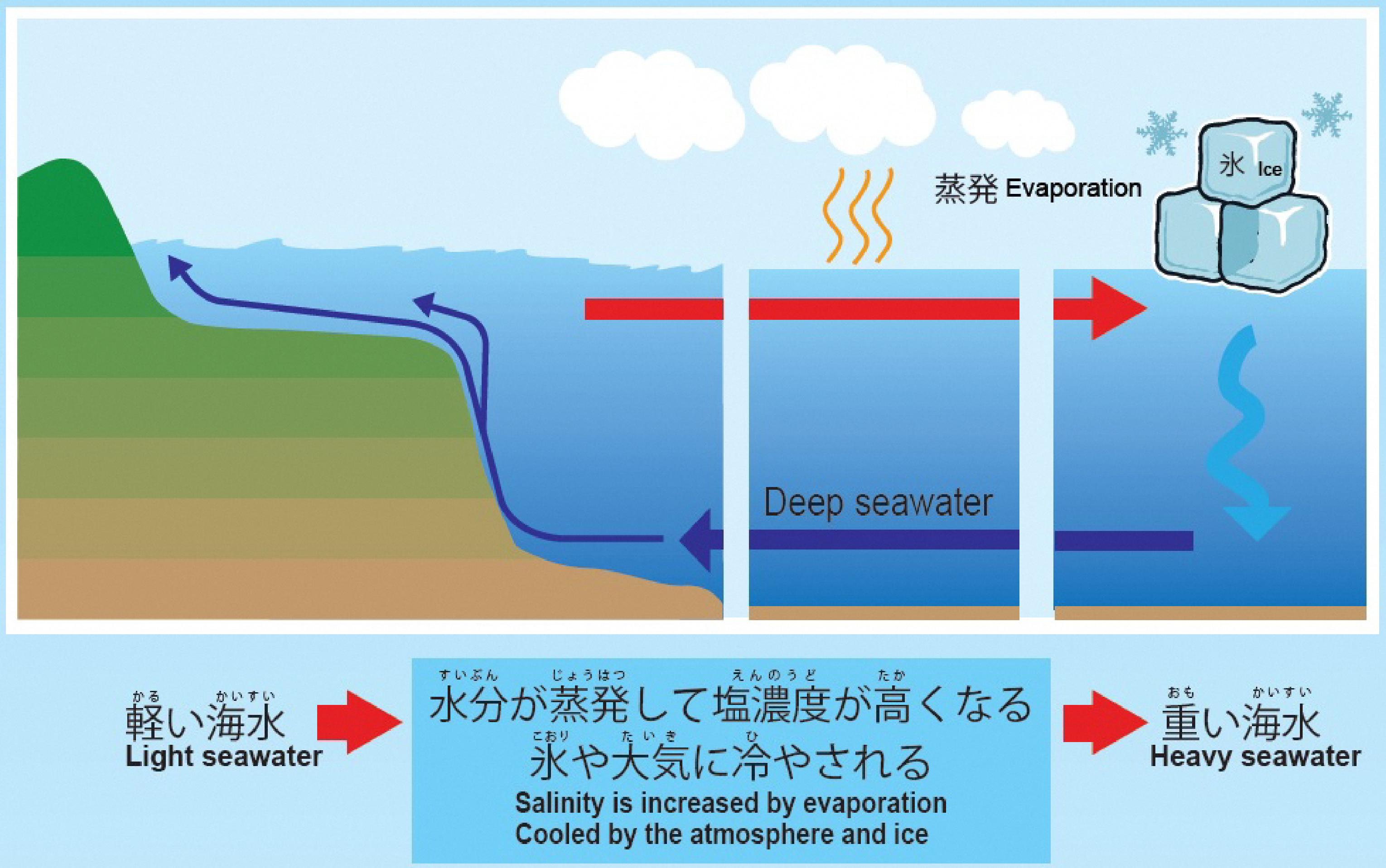 水 海洋 と は 深層
